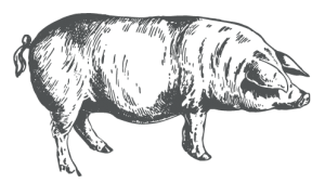 Woodland-Reared Pork